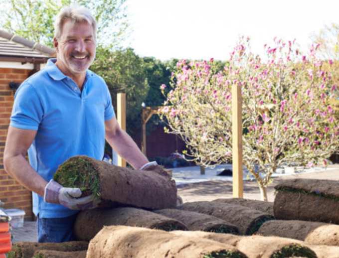 Steps to Becoming a Professional Landscaper